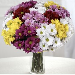 BOUQUET WITH MULTICOLORED DAISIES